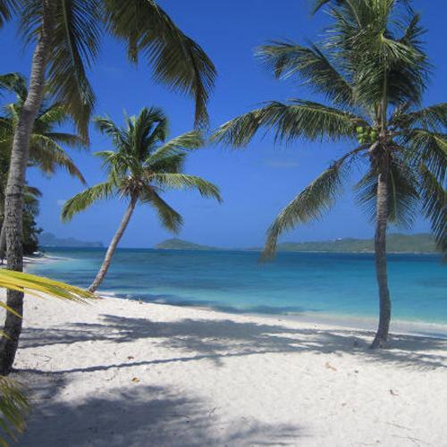 zeilvakantie caribbean strand